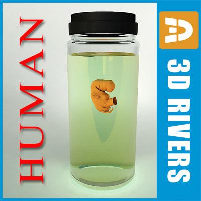 Human_embryo_development-collection_logo.jpg