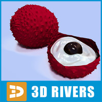 3ds lychee fruit