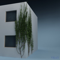 3d wall plant 02