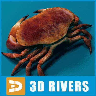 crab_logo.jpg