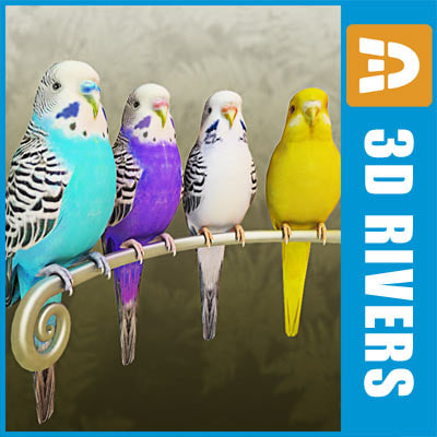 Budgies_logo.jpg