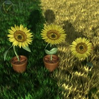 lightwave 3 sunflowers