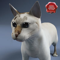 cat modelled 3d 3ds