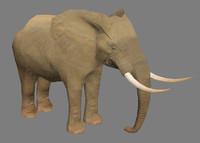 Elephant - Lowpoly