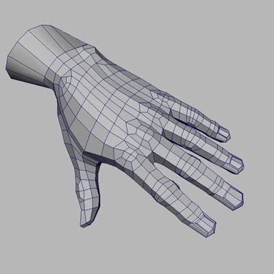 Human hand 3d model 3d model sites