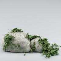 3d model rocks plants
