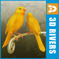 Canary by 3DRivers