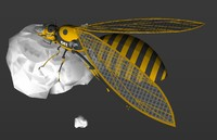 3d model wasph