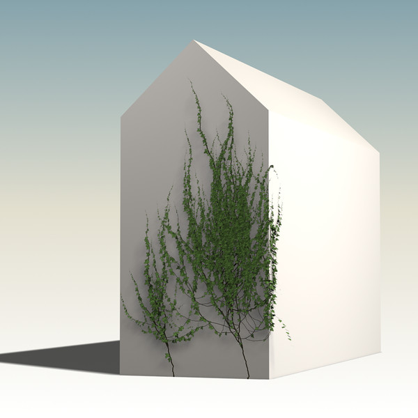 maya plant ivy house - wall & plant 03... by ArtStudio3d