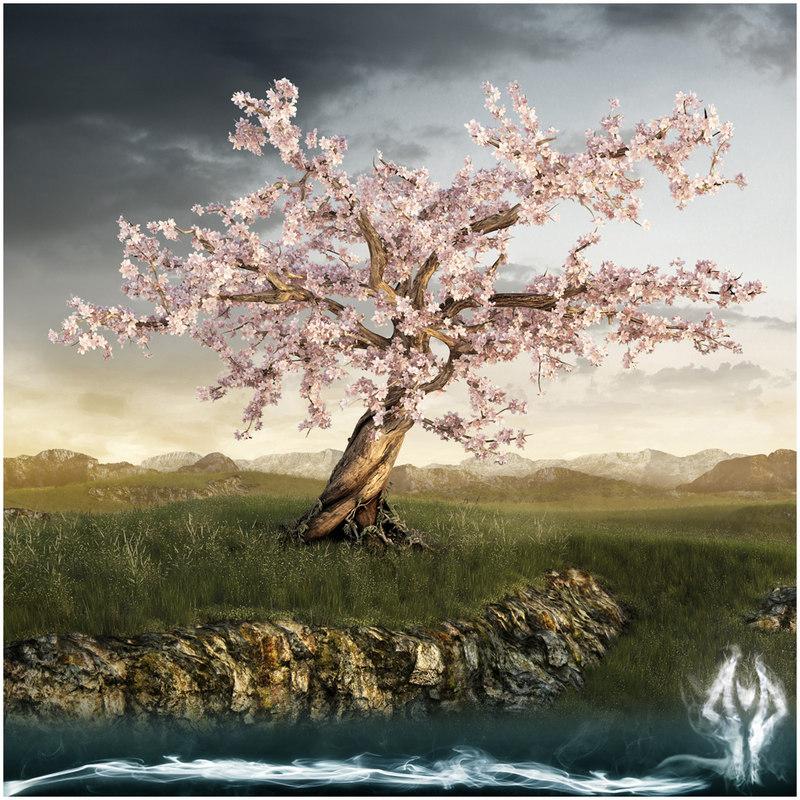 db_cherrytree_a.jpg