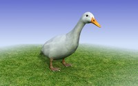 Low Poly 3D model of a white duck
