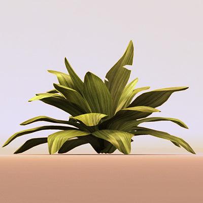 plantHero2.jpg