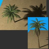 Palmtree Single