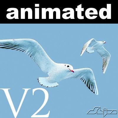 Seagull Jhonatan Livingstone V2 for max9+