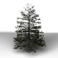3ds max tree modo