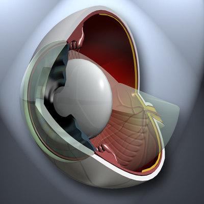 Eye-Pres.jpg