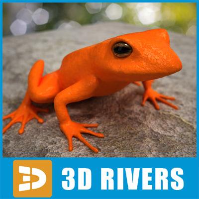 Poison-dart-frog-01-Logo.jpg