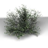 3ds max tree