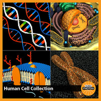 Human Cell Collection