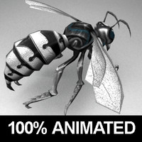 Metall wasp animated