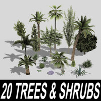 20 Trees and Shrubs