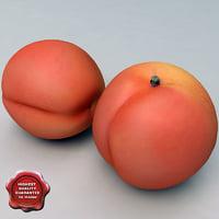 3d model apricot modelled