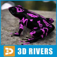 atelopus frog 3d model