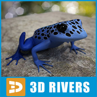 Poison dart frog 02 by 3DRivers