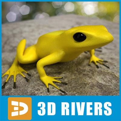 Poison-dart-frog-03-Logo.jpg