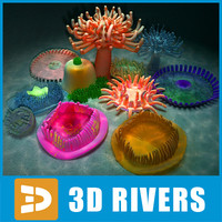 3ds max set actinias