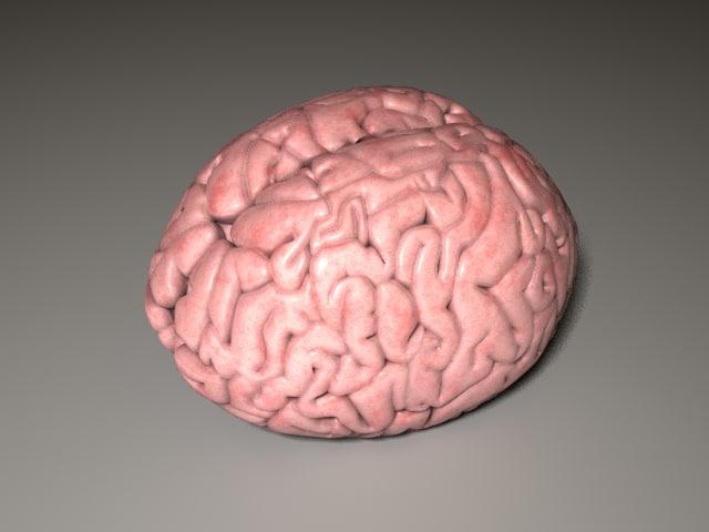 Brain_v002.png