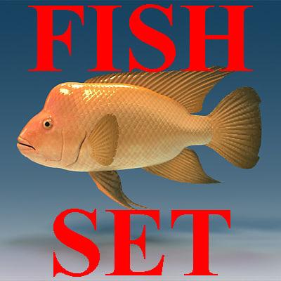 Logo-fish.jpg