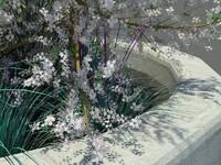 garden trees 3d max