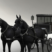 horse carriage 3d max