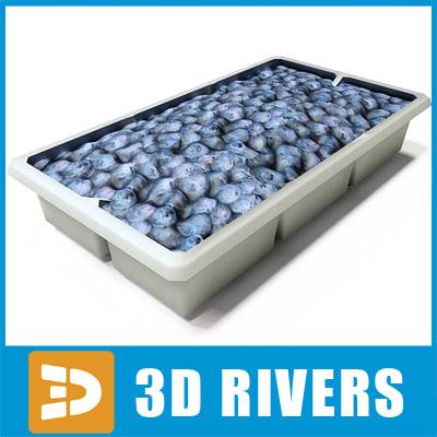 blueberry-box_logo.jpg