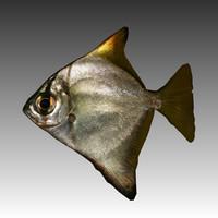 obj fish
