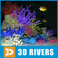 Coral set 01 (middle poly)  by 3DRivers