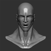 generic male head 3d model