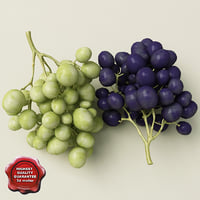 3d model grapes modelled