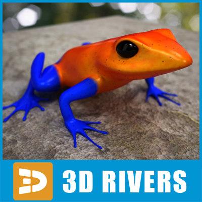 Poison-dart-frog-04-Logo.jpg