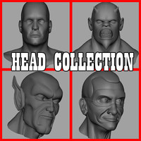 Head Collection