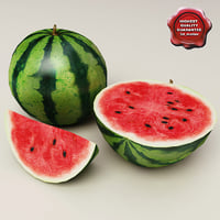 max watermelons modelled