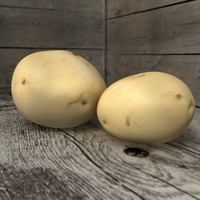 young potato 3d c4d