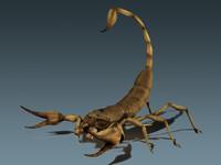 3d model scorpion