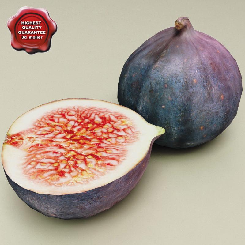 Figs_0.jpg