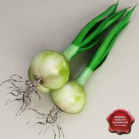 onion v2 3d model