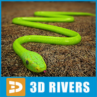 Green mamba by 3DRivers