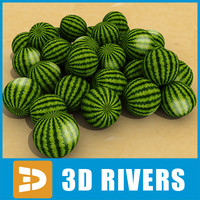 pile water melons 3ds