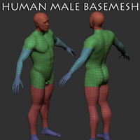 humanmale basemesh human male 3d model