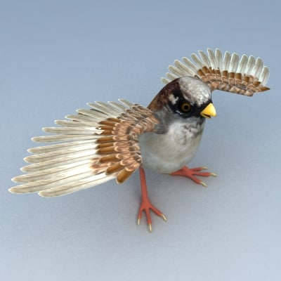 sparrow low poly -c-1.jpg